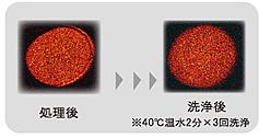 C63C6D82-554D-4AFA-883A-39C623247D86.jpg